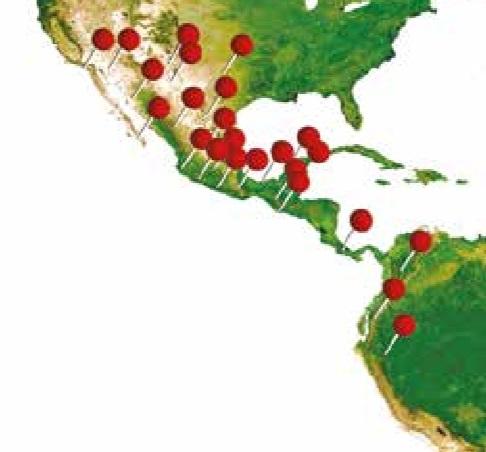 Envios a Sudamerica